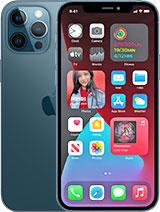 iPhone 12 Pro Max / 6.7